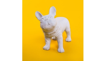 Bulldog White etalage decoratie